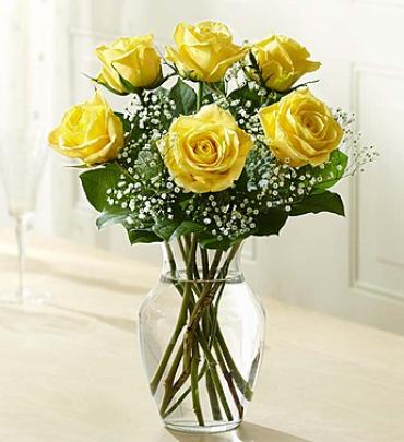 Love's Embrace™ Roses – Yellow