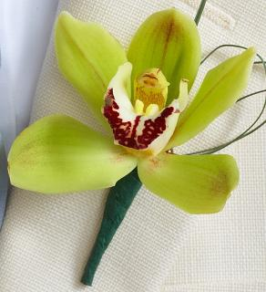 Beach Boutonniere Arrangement